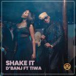 [Music] D'Banj ft Tiwa Savage – Shake It