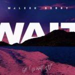 [Music] Maleek Berry – Wait