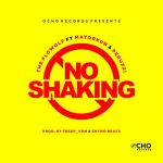 [Music] The Flowolf ft Mayorkun, Peruzzi – No Shaking